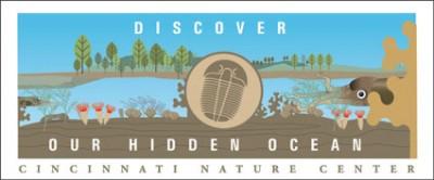 Summer Hidden Ocean Graphic