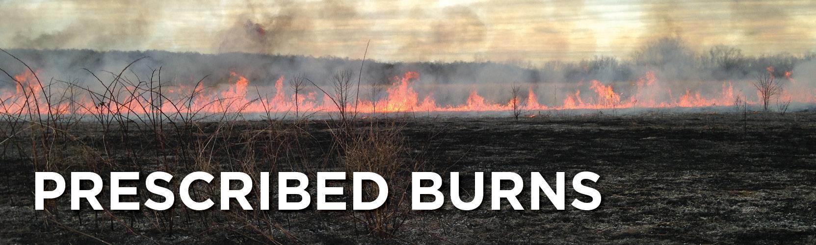 "Banner of field on fire with ""Prescribed Burns"" written across it"