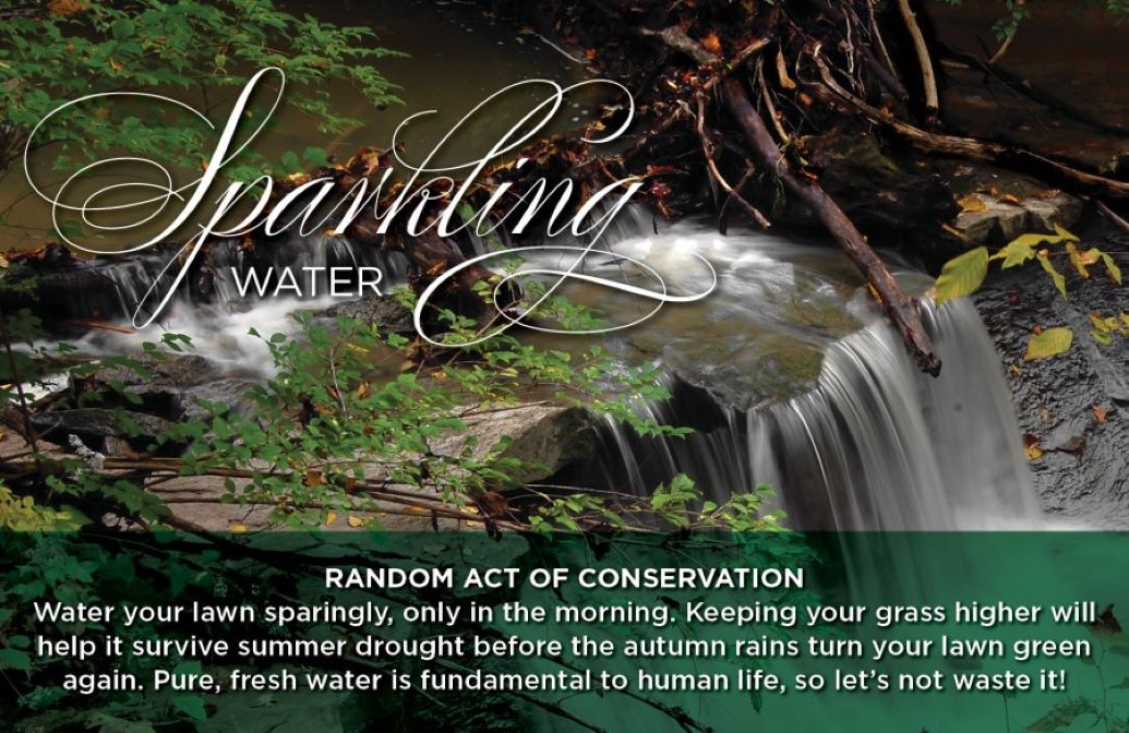 """Random Acts of Conservation """"Sparkling Water"""" Banner of a small waterfall"""