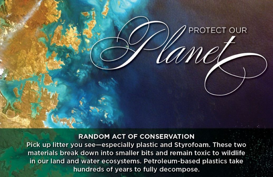 """Random Acts of Conservation """"Protect Our Planet"""" Banner of the Planet"""