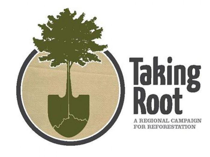 Taking Root Logo