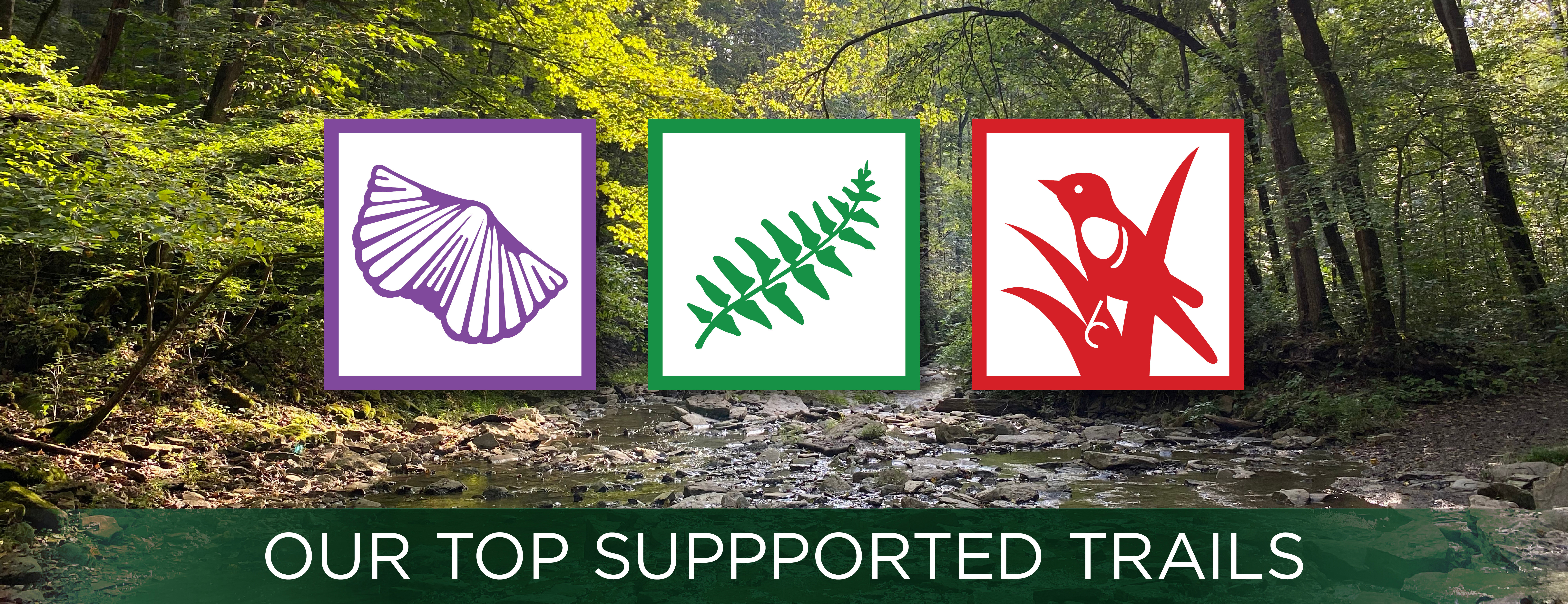 Top Supported Trails Icons - Geology, Fernwood, and Redwing