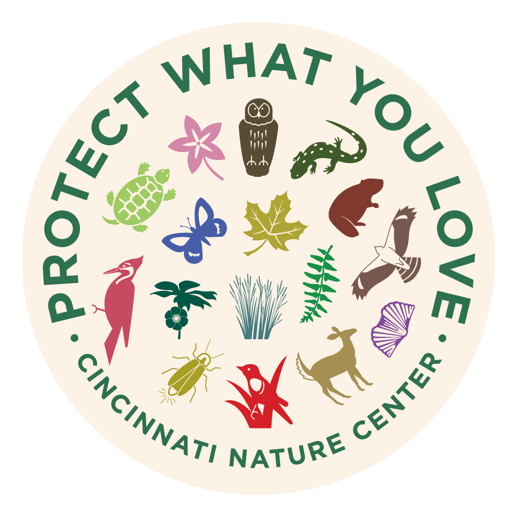 An image of the vinyl sticker which says PROTECT WHAT YOU LOVE around the top and CINCINNATI NATURE CENTER at the bottom, with the trail icons in the middle
