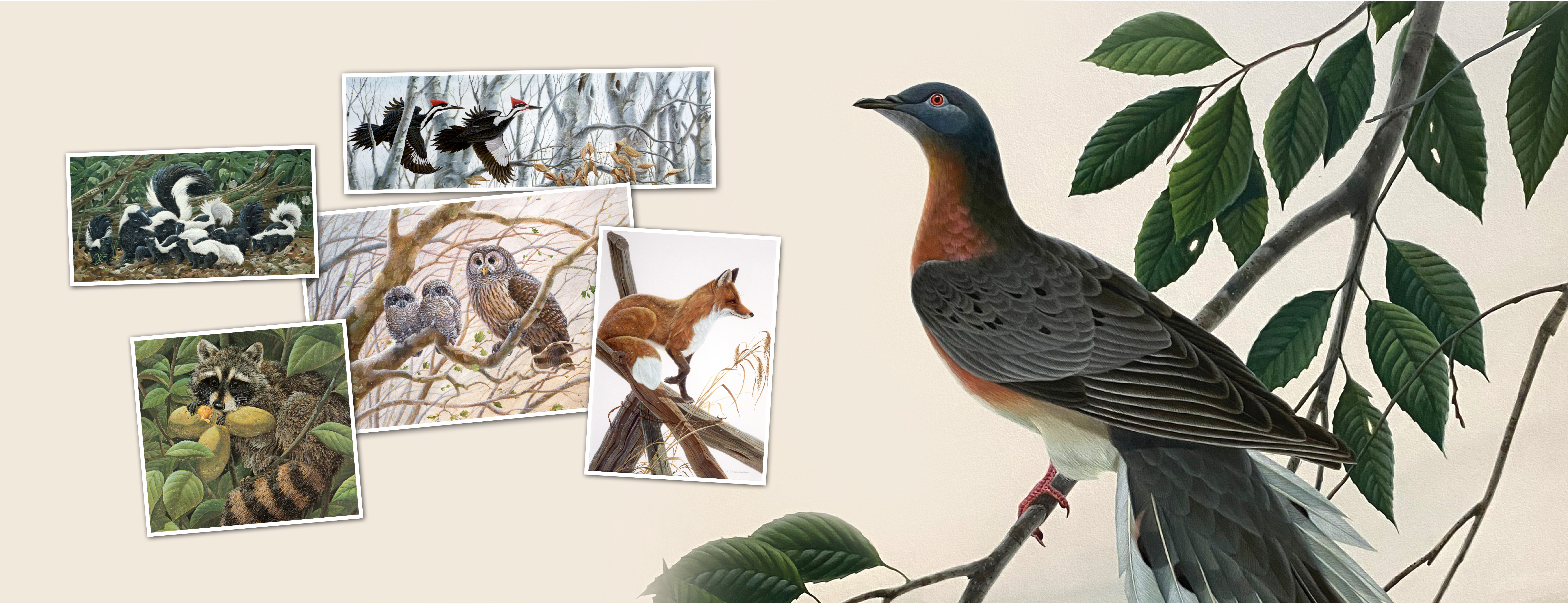 Web banner graphic with several of John Ruthven's paintings.