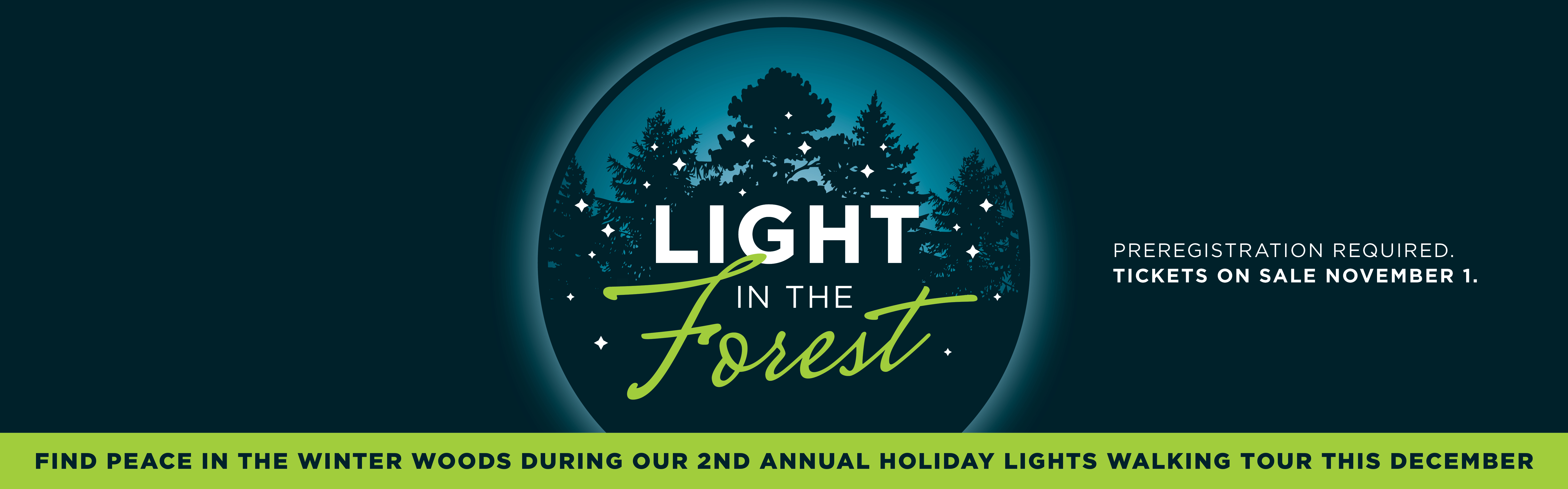 Light In the Forest Banner