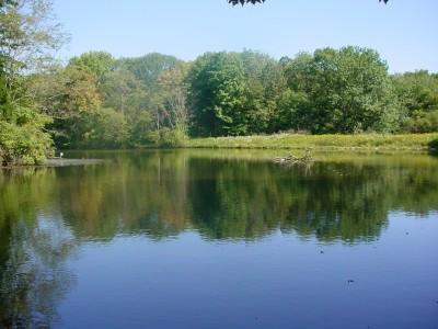 Powel Crosley Lake
